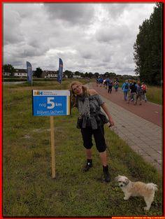 Alkmaar 20.6.2015 Vierdaagse Dag 4 - Albert Westra - Picasa Webalbums