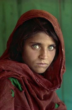 Sharbat Gula  Steve McMurry