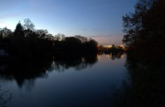 Mill Pond Silhouettes - Bracknell