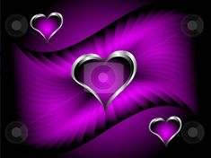 Purple Heart | purple hearts Valentines Day Background stock vector clipart, A purple ...