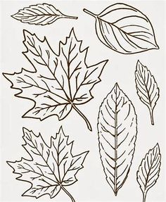 Free Printable Clip Art Leaves By Megan Berry You Could Use My Gift Tags To Price Items Youre Selling Or On A Card Making As Bookmark