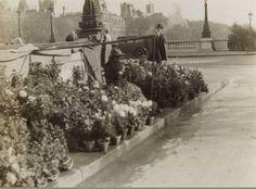 Le quai aux Fleurs dans les années 1920, une photo de © Germaine Krull (1897-1985)  (Paris 4ème)