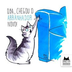 como-diria-gato11