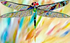 Venetian Glass Dragonfly II by Barbara Chichester  http://fineartamerica.com/featured/venetian-glass-dragonfly-ii-barbara-chichester.html