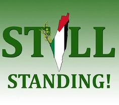 Free Palestine - Comunidad - Google+