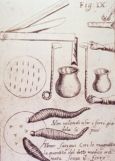 make a jar of leeches? Medical-Instruments-Instruments-used-for-bloodletting. The Hanged Man, The Hierophant, Cupping Therapy, Hematology, Danse Macabre, Vintage Medical, Plague Doctor, Medical History, Character Aesthetic