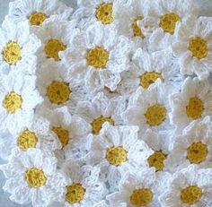 Svěží žako Daisy háčkování Květiny Nášivky podle IreneStitches
