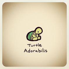 turtle wayne fruit - Google Search