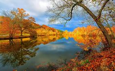 Trees – Fall – Blue sky – Fallen Leaves – Lake – Clouds – Landscapes – View