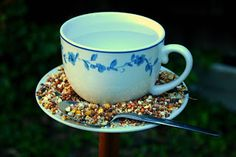 Two Men and a Little Farm: TEACUP BIRDFEEDERS