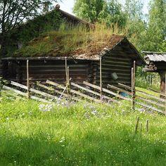 Pielisan museo Lieksa photo by Taina K