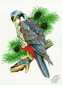 Falcon - Cross Stitch Kits by RTO - R132
