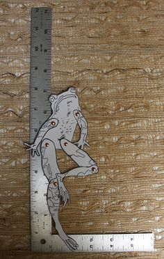 Fully Assembled Articulated Paper doll Mr. Frog by CreativeFuse