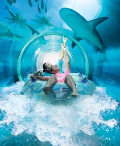 How AMAZING is that underwater waterslide!! This would have to be The Ultimate Family Vacation Destination!! @wotifcom #wotifia #sp