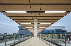 Guangzhou, Corridor, Line, Buildings, Bridge, Stairs, Pencil, 21st, Gallery