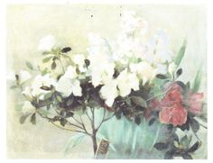From FINLAND - Helene Schjerfbeck, finnish painter Azalea and hyacint In oil 33 x 42 cm