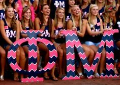Loving these Phi Mu Chevron Letters. Have fun and make chevron pink letters. #PM