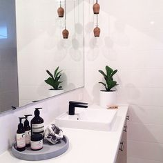 Bathroom | concrete tray | pot plant