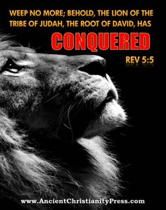 Christianity, Bible verses,  Weep no more, the Lion of the tribe of Judah, has conquered