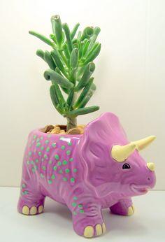 Succulent planter DIY kit Dinosaur Purple or Green Desk Accessories or Dorm room decor