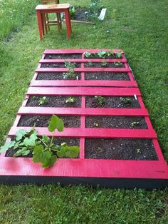 This is my first blog...are ya ready!!  Have you ever wondered how to start your first garden? Using pallets is an easy way to do it...  Ch...