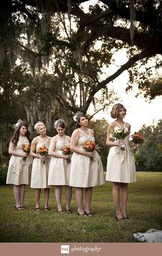cream bridesmaids dresses with birdcage veil