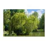 Found it at Wayfair - 'Pond and Paintography' by Philippe Sainte-Laudy Photographic Print on Wrapped Canvas