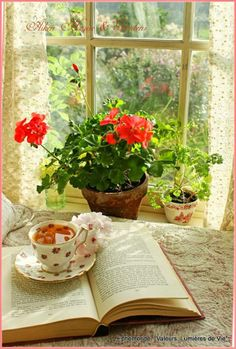 a few of my favorite things / cup of tea / books / flowers / sunlight / windows