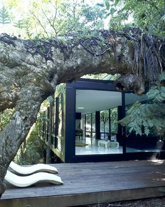 Architect Chris Tate's Forest House ( his weekend getaway house) is a modular, modern glass structure perched amongst the dense forest hills in Titirangi. Architecture Design, Amazing Architecture, Future House, My House, Magic Places, Escalier Design, Casas Containers, Forest House, Glass House