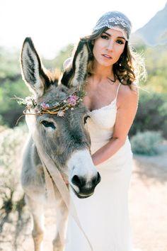 I Dream Of Arizona Wedding Inspiration