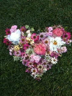 Even dead headed flowers are beautiful to a gardener. <3