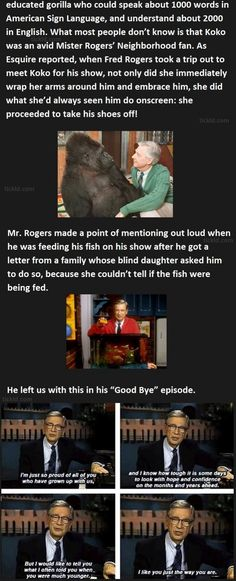 REALLY cute information-bits about Mr. Rogers. Many I'd heard, but several I hadn't. Cute and uplifting two minutes of reading!