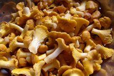 "Garkotłuk, czyli kuchennie: Jak szybko oczyścić ""kurki"" Canning Recipes, Home Remedies, Love Food, Recipies, Stuffed Mushrooms, Food Porn, Beans, Food And Drink, Tarts"