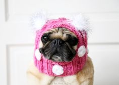 Polka-dots are a fun staple in most whimsical wardrobes. Bring that flair to your pets style with a custom knit hat from All You Need is Pug!  This hat will be made from soft 100% acrylic yarn in the color of your choosing and adorned with hand-crocheted polka-dots. Atop the hat is a pair of fuzzy pompoms. Please note your pompom color choice in the note to seller at checkout. See our list of pompom colors below.  Pompom Colors: Red Light Pink Hot Pink Lime Green Kelly Green Olive Green…