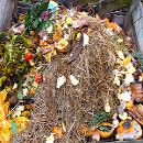 4 pasos para empezar una pila de compost ecoagricultor.com