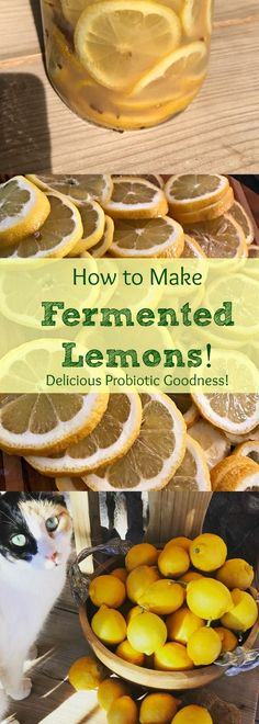 YUMMY Fermented Lemons! This is the perfect way to preserve those lemons! How to Ferment Lemons in 9 Easy Steps! Perfect for cooking, salads, and giving your body extra probiotic goodness!