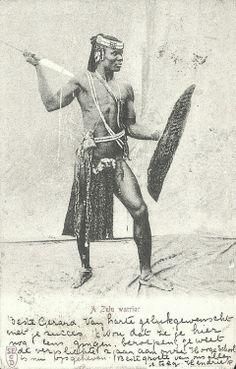 A Zulu Warrior. Postcard, Union of South Africa.