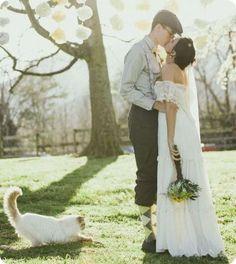 Fotos de gatos en bodas