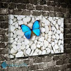 Mavi Kelebek Taşlar Tablo #hayvan_tabloları