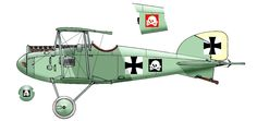 Albatros D.I - Pilot - prince Ritter prinz Friedrich-Karl von Preussen. March, 1917. He was shot down and took prisoner on 21st March 1917 (by Lt.Pickthorn...