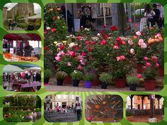 Levegnac, holiday in France, Dordogne, Holiday gite, La Junnel Holiday Gite, South of France, Holiday Rentals, Travel