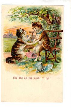 AN491 Postcard Animal Cat proposing embossed