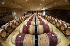 The barrel cellar at Bodegas Roda in Rioja