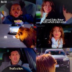 Grey's anatomy has ruined my ability to get attached to characters easily Greys Anatomy Funny, Grey Anatomy Quotes, Greys Anatomy Zola, Derek Shepherd, Grey's Anatomy Wallpaper, Meredith And Derek, Grey Quotes, Dark And Twisty, Grey Stuff