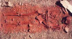 Squelette pigment rouge
