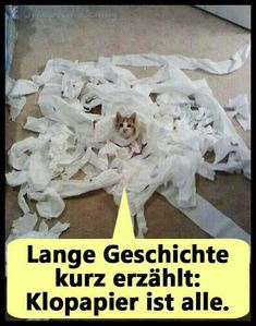 Klopapier is alle;)