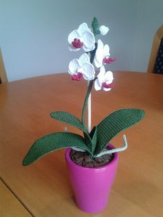 These orchids are all completely handmade. Every part of an orchid is crocheted: the blossoms, the stem, the leaves and the roots.  You can order one by sending me an email on...