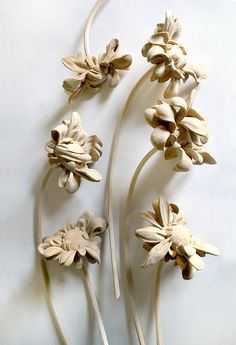 Wilted Series 1, 2015, Carved Basswood,  Approx. 13 X 4 each Adam Thorn
