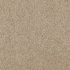TrafficMASTER Lucky Ticket - Color Nomad Texture 12 ft. Carpet-0275D-21-12 - The Home Depot