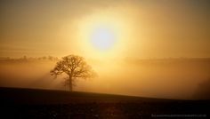 https://flic.kr/p/iDsLm9 | Misty Morning | Early morning by RIchard Walker courtesy of Flickr Creative Commons licensed by CC BY 2.0 https://creativecommons.org/licenses/by/2.0/